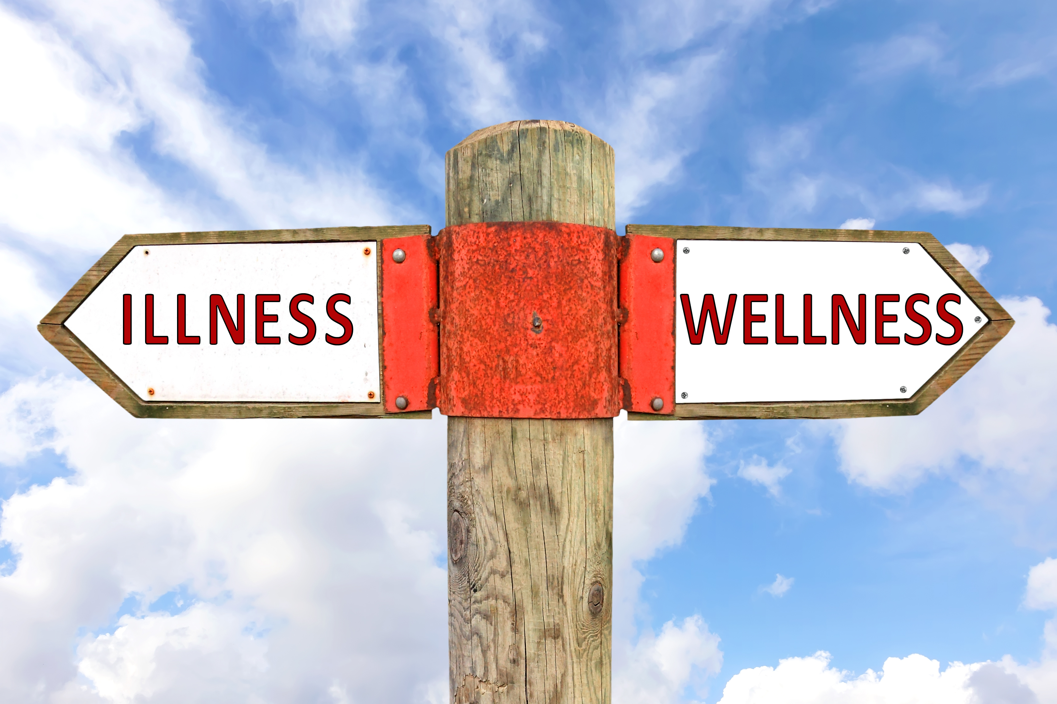 signs with words illness and wellness